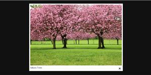 jQuery Slider con immagini e video con effetto LightBox